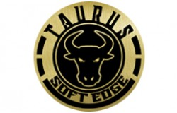 Cartouches TAURUS Soft Edge Magnum